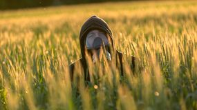 Allergic man with gasmask. At the field Stock Image
