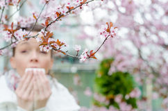 Allergic reactions to spring flowers Royalty Free Stock Images