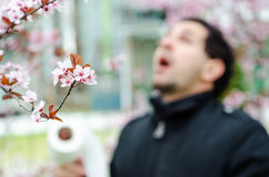 Allergic reactions to spring flowers Royalty Free Stock Photography