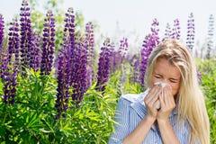 Allergico ai lupini Immagini Stock