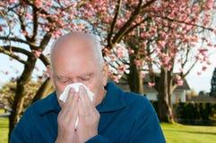 Allergieën royalty-vrije stock foto's