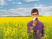 Allergie de pollen Images libres de droits