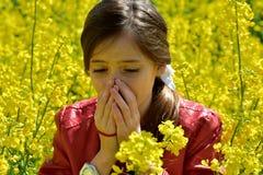 Allergie de pollen photos stock