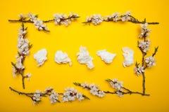 Allergie en lopende neus, concept Servetten voor de neus in een kader van bloemen royalty-vrije stock foto's