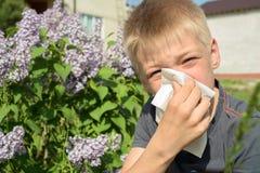 Allergie om stuifmeel, de lente, de jongen met sjaal te bloeien royalty-vrije stock afbeelding