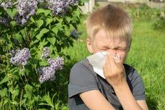Allergie om stuifmeel, de lente, de jongen met sjaal te bloeien royalty-vrije stock foto