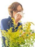 Allergie stagionali Fotografie Stock Libere da Diritti
