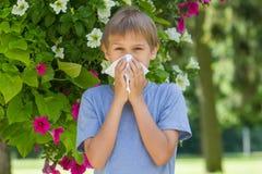 allergie Weinig jongen blaast zijn neus dichtbij tot bloei komende bloemen royalty-vrije stock foto's