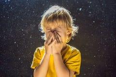 Allergie, zum des Jungenniesens abzuwischen, weil er allergisch ist, Staubfliegen in der Luft abzuwischen, die durch Licht hinter stockfotos