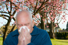 Allergies Royalty Free Stock Photos
