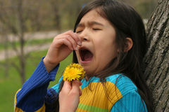 Allergies. Girl allergic to  dandelion flower Stock Photography