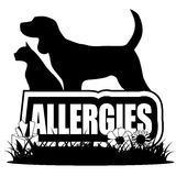 Allergies icon with dog cat plants peanuts Royalty Free Stock Images
