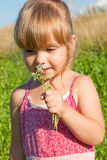 Allergies to the flowers. The little girl in a pink dress sniffing flowers Stock Photography