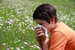 Allergischer Junge zum Blütenstaub und zu den Blumen Stockfotos