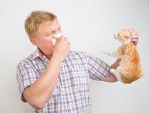 Allergiskt till djur Arkivfoto