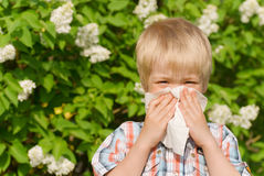 Allergy. The little boy sneezing from flower pollen Stock Photos