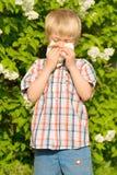 Allergy. The little boy sneezing from flower pollen Stock Photos