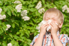 Allergy. The little boy sneezing from flower pollen Stock Images