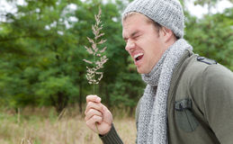 Allergy. Man in wood with scarf and cap Stock Photos
