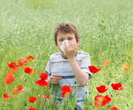 Allergy boy with handkerchief on red flower field Stock Image