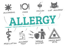 Allergy concept  illustration. Allergy concept. banner with keywords and icons Royalty Free Stock Images