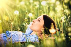 Girl lying in field of dandelions stock photography