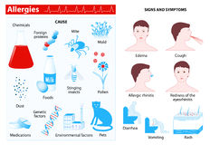 Allergy. infographic Royalty Free Stock Photos