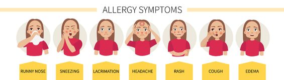 Allergy infographic. Vector. stock illustration