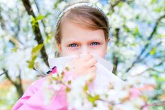 allergy A menina está fundindo seu nariz perto da árvore da mola no blo imagem de stock