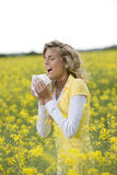 Allergy Season. Young woman sneezing in a flowers meadow. Concept: seasonal allergy Royalty Free Stock Photos