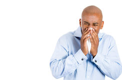 Allergy, sneezing, tissue paper, guy Royalty Free Stock Photo