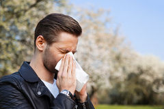 Allergy, Spring, man. Man with allergy sneezing into handkerchief with blooming trees in background stock photos