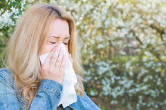 Allergy, Springtime, woman. Woman with allergy sneezing into handkerchief with blooming trees in background stock images