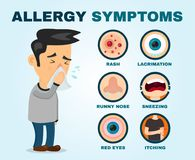 Allergy symptoms problem infographic. Vector. Flat cartoon illustration icon design. Sneezing person man character Royalty Free Stock Image