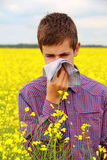 Pollen Allergy. Boy teenager in yellow canola field blowing his nose and suffering from pollen allergy Stock Photos