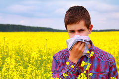 Pollen Allergy Royalty Free Stock Photo