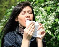 Allergy to pollen Stock Photos