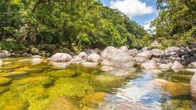 Allerta del fiume di Mossman, gola di Mossman, parco nazionale di Daintree, QL immagine stock