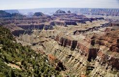 Allerta del Grand Canyon Fotografia Stock Libera da Diritti