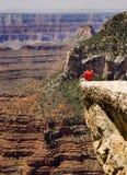 Allerta del Grand Canyon Immagini Stock Libere da Diritti