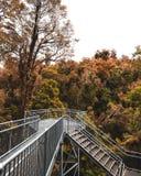 Allerta del metallo circondata da Autumn Trees Immagine Stock