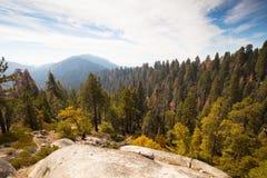 Allerta del parco nazionale della sequoia Immagini Stock Libere da Diritti
