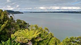 Allerta del punto di Huia, trascurante la baia a Auckland ad ovest Immagini Stock