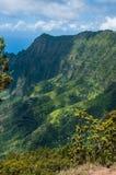 Allerta del ` u O Kila dell'unità di elaborazione sopra la valle di Kalalau in Kauai, Hawai Immagine Stock Libera da Diritti
