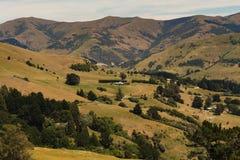Allerta della cima della collina della Nuova Zelanda con la montagna Immagine Stock Libera da Diritti