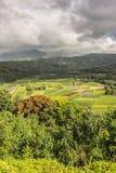 Allerta della valle di Hanalei, Kauai, Hawai Fotografia Stock Libera da Diritti