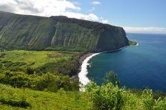 Allerta della valle di Waipio, grande isola, Hawai Fotografia Stock