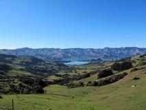 Allerta di Akaroa in Nuova Zelanda del sud Fotografia Stock Libera da Diritti