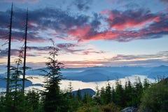 Allerta di Bowen alla montagna di Cypress Immagini Stock