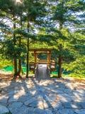 Allerta di meditazione con il Sun ed il lago Immagini Stock Libere da Diritti
